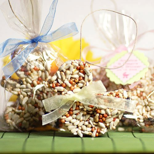 Bird Seed Party Favors