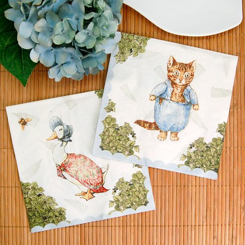 Peter Rabbit Party 6.5