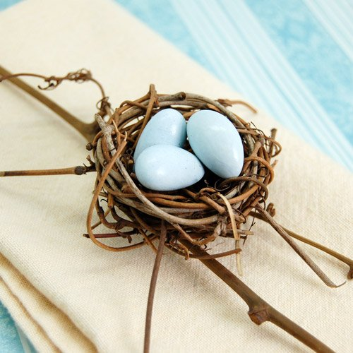 Mini Birds Nest and Twig